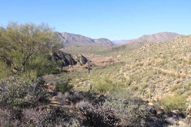 AZ Trail Kelvin 038