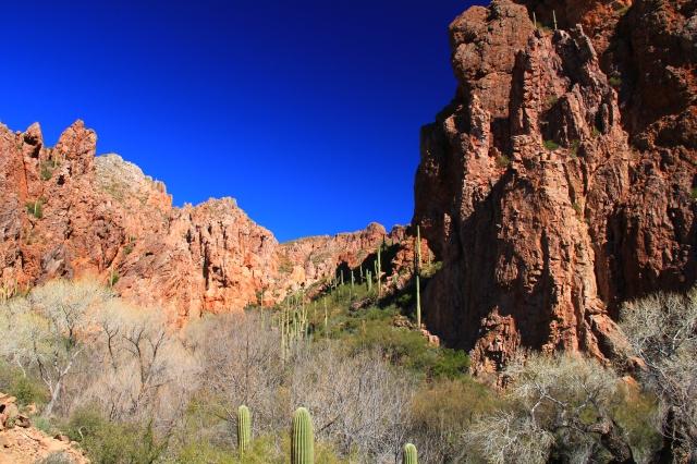 Martinez Canyon 089
