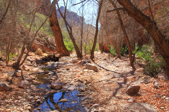 Martinez Canyon 145
