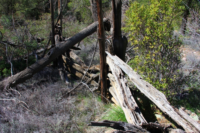 Haunted Cabin 066