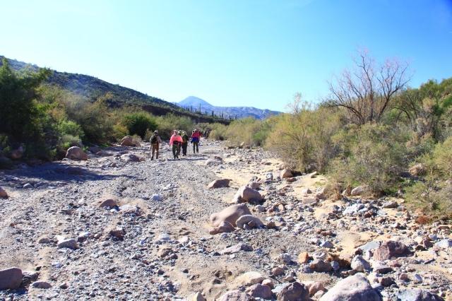 Gila Canyons 064b