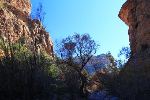 Gila Canyons 155a