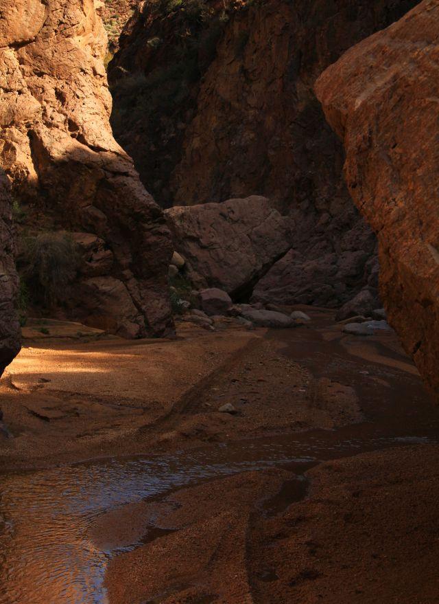 canyon8